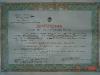Десимирова диплома из 1953. године